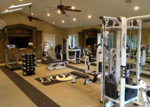 Balance fitness commercial and home gym design san mateo for How to design a home gym